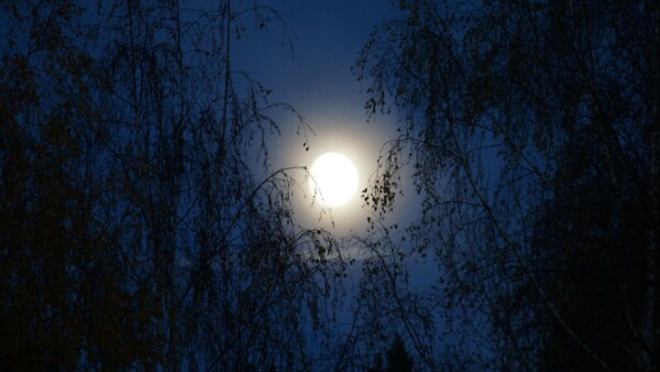Luna – proč a jak se s ní spojit?